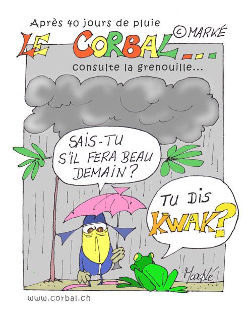 corbalgrenouilleweb